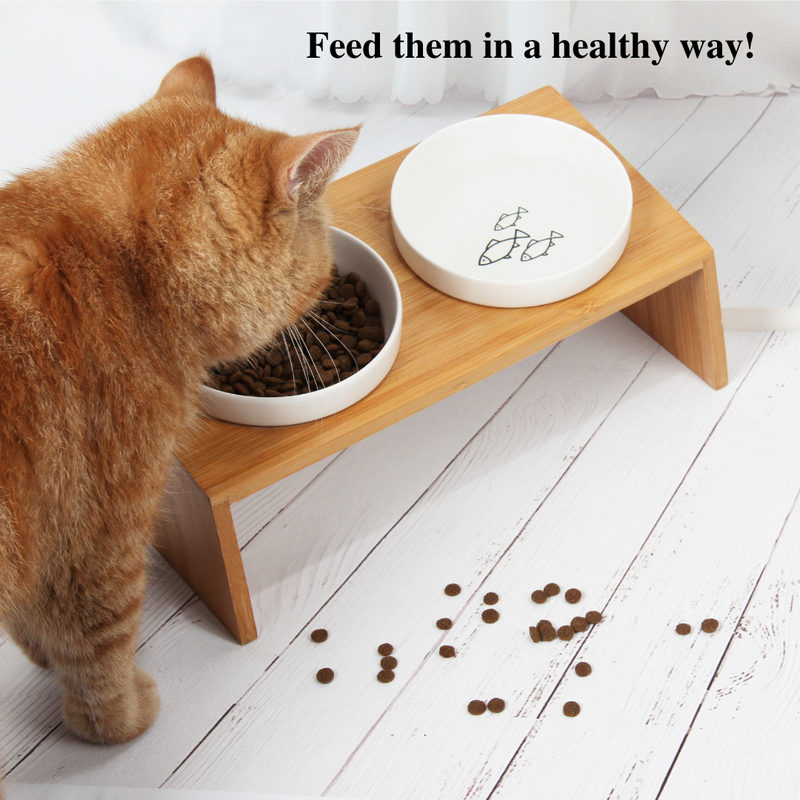 Cat Raised Ceramic Bowls, Double Pet Feeding Bowls(US ONLY)