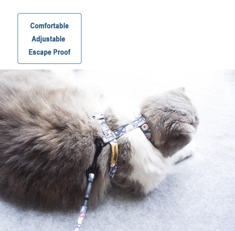 Cat Adjustable Harness & Leash Set