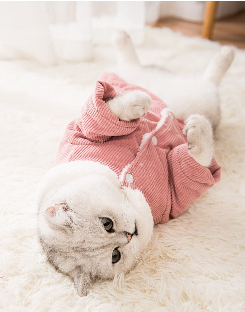 Pet Cat Turtleneck Clothes Winter Outfits Sweaters