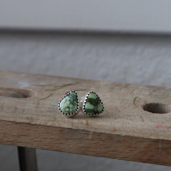Sonoran Gold Turquoise Stud Earrings