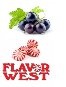 BLACK CURRANT - FW