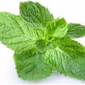 EUCALYPTUS WITH MINT INAWERA-FLAVOURINGS-Infinite Vaper