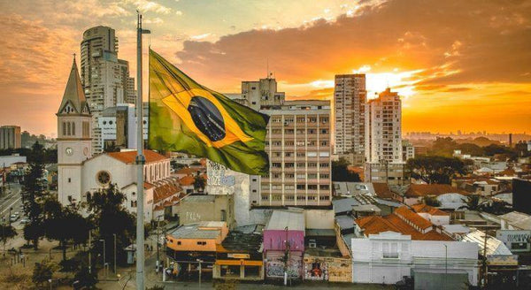 Brazil; all about the coffee powerhouse - Lumia Coffee