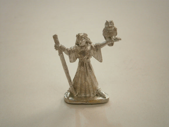 Wood Elf with shaman with owl