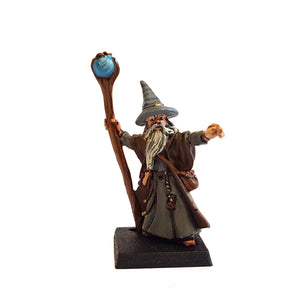 Elfsera - The Wise Wizard