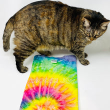 Load image into Gallery viewer, Choose Joy Tie-Dye Rainbow T-Shirt