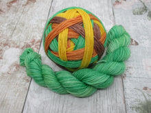 Load image into Gallery viewer, Merino Nylon Self Striping Yarn in Autumn colourway with a matching mini skein