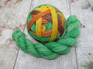 Merino Nylon Self Striping Yarn in Autumn colourway with a matching mini skein