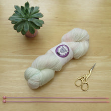 Load image into Gallery viewer, Merino Sock 100g in Posy colourway
