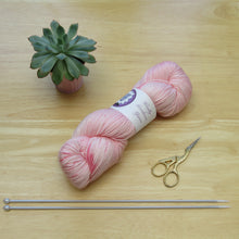 Load image into Gallery viewer, Merino Silk 100g 4ply in Azalea colourway