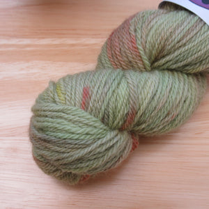 Polwarth DK 50g in Meadow colourway