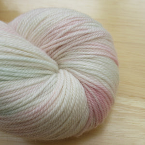 MCN 4ply 100g in Posy colourway