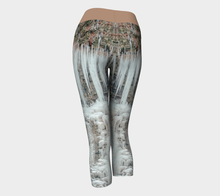 Load image into Gallery viewer, Yoga Capris Winter - HIG Activewear - Yoga Capris