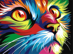 Paints By Numbers Colorful Animals Pictures Hopikas Colorful Cat