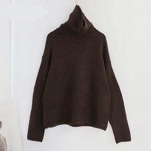 Women Knitted Turtleneck Cashmere Sweater Hopikas One Size 1-Deep Brown