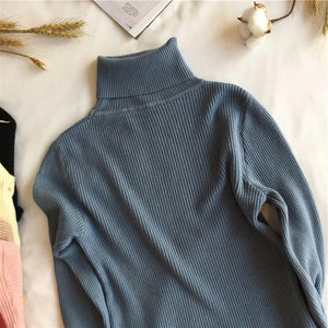 Women Turtleneck Sweater Hopikas