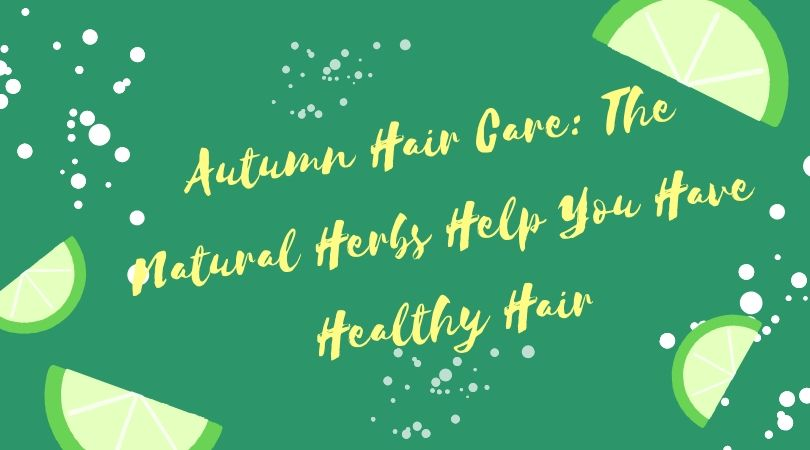 Autumn Hair Care: The Natural Herbs Help You Have Healthy Hair