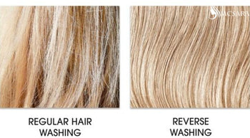 Reverse Hair Washing: Definition & Result