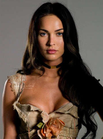 Megan Fox movies