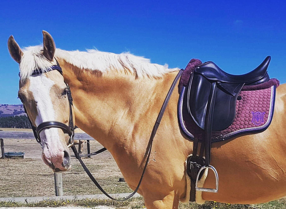 NGE GALLERY | E.A.Mattes Saddle Pad & Quilt Girth