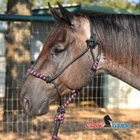Load image into Gallery viewer, Classic Equine Two Tone Rope Halter & Lead - NextGen Equine