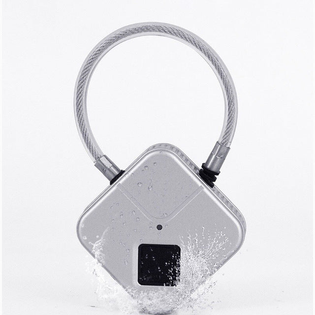 Electric BDSM chastity lock