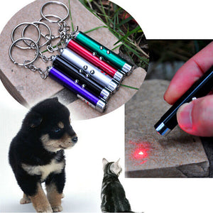Laserpointer Keychain Fun For Pets
