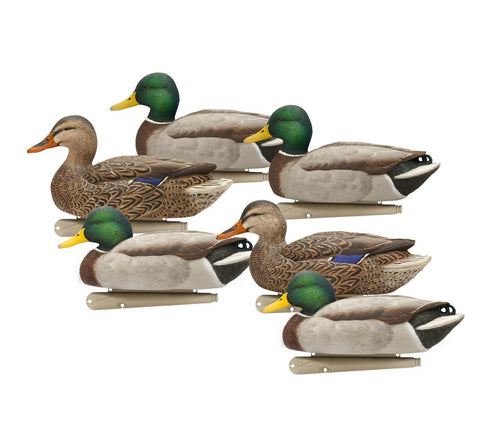 Top Flight Open Water Mallards