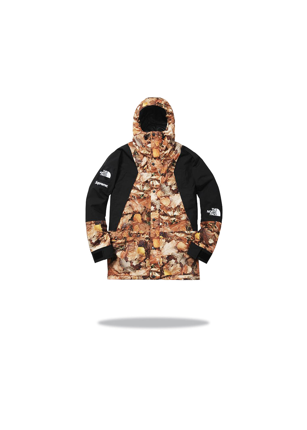 Supreme The North Face Mountain Light Jacket Leaves