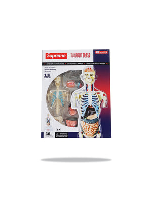 Supreme Transparent Torso
