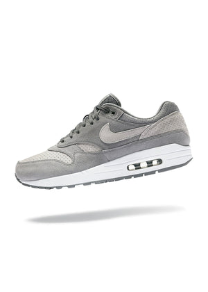 Air Max 1 Cool Grey Wolf Grey