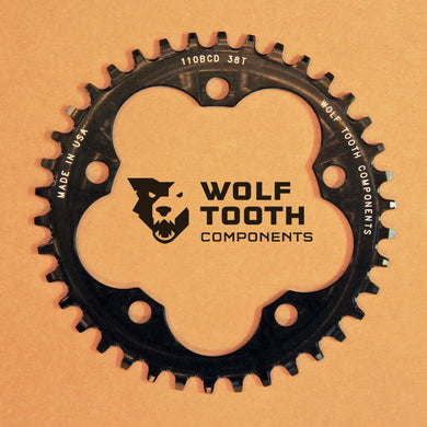 CHAINRING PCD110