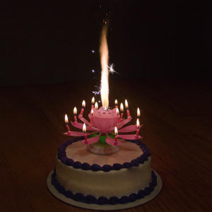 Birthday Cake Candle Bloomer