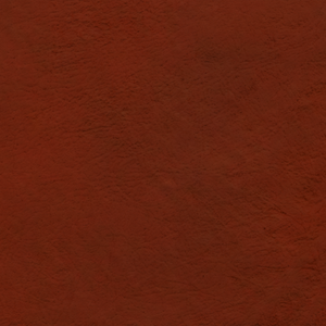 Sienna Saddle Color