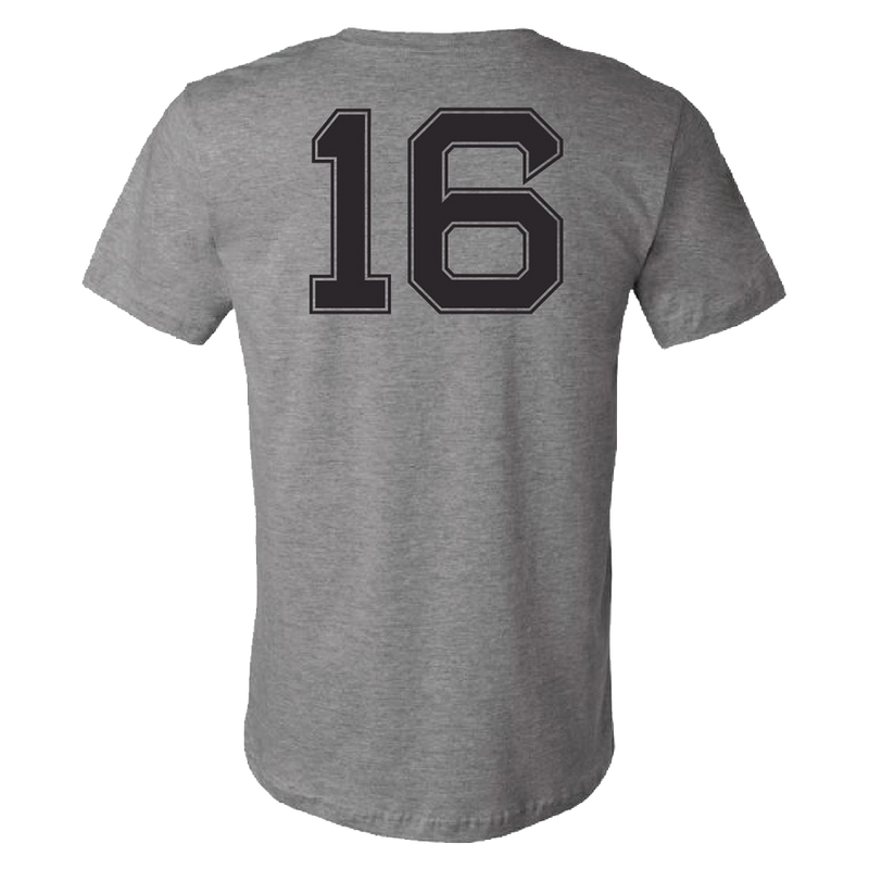 2016 Fenway Park T-Shirt - Grey