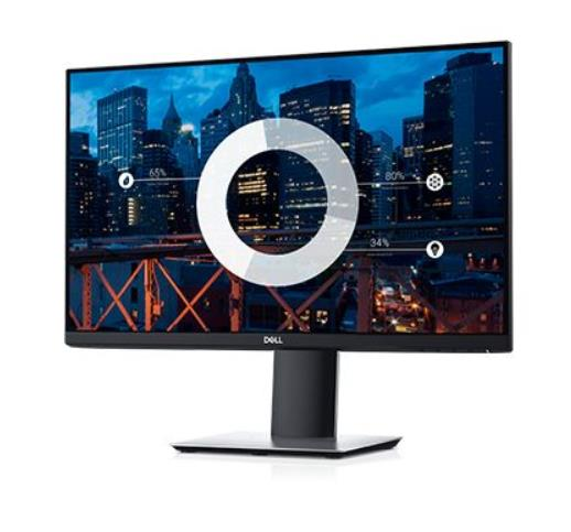 LCD Monitor|DELL|P2419H|23.8"