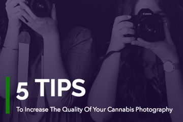 5 Tips To Produce High Quality Cannabis Photography