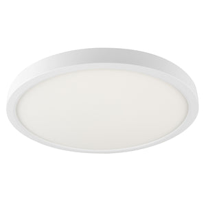 "14"" Smart WiFi White RGBW Tunable Utility Ceiling Light"