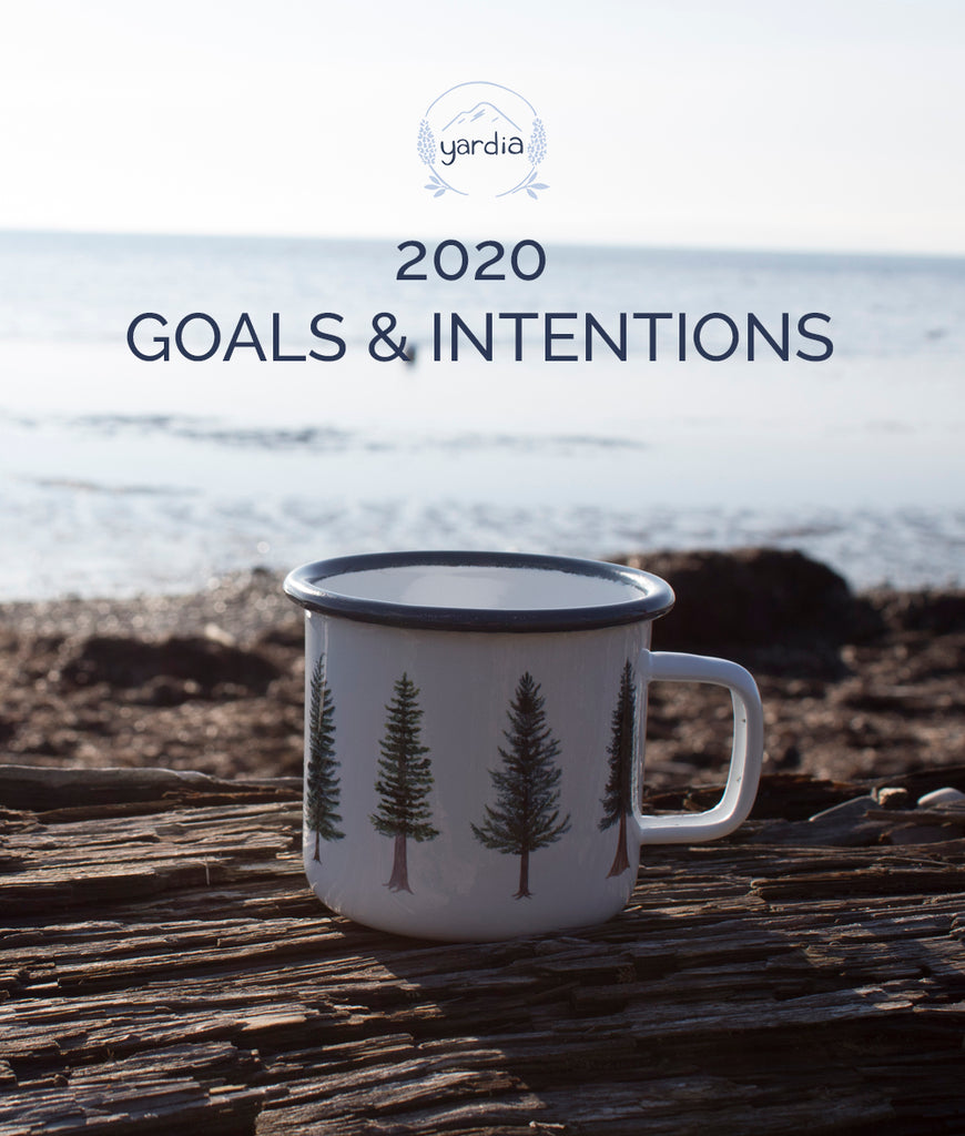 2020 Goals and Intentions