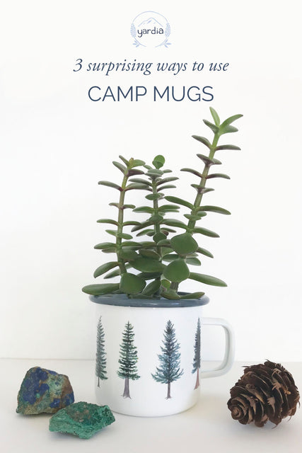 3 Surprising Ways to Use Camp Mugs