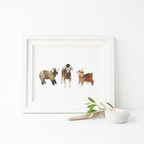 baby goats nursery decor