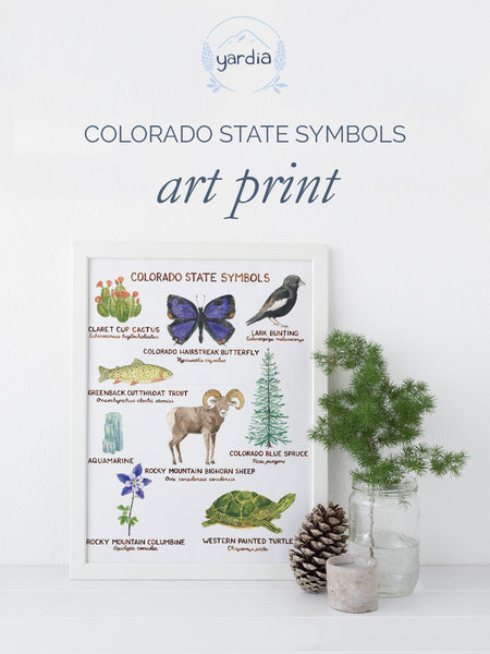 colorado state symbols art print