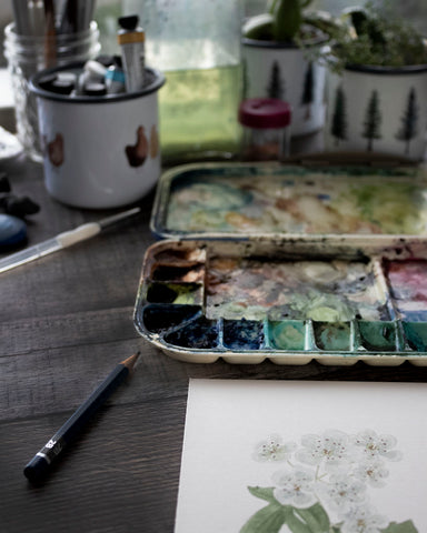 painting supplies and botanical watercolor