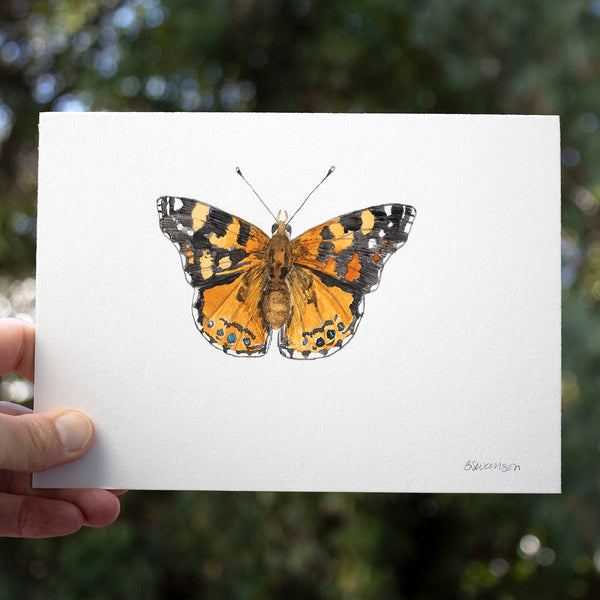 West Coast Lady Butterfly Original Watercolor Painting