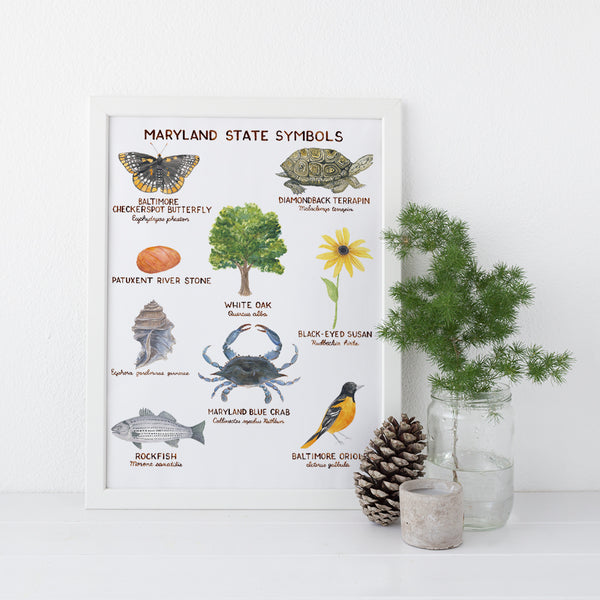 maryland state symbols art print
