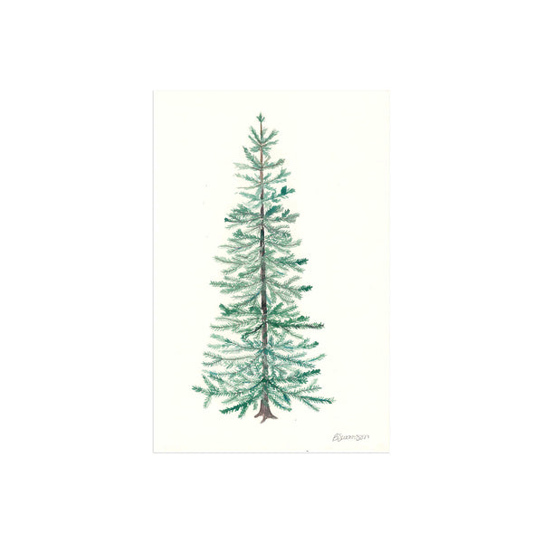 Blue Spruce Original Watercolor Painting