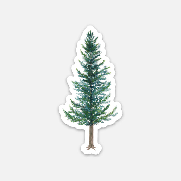Douglas Fir Sticker