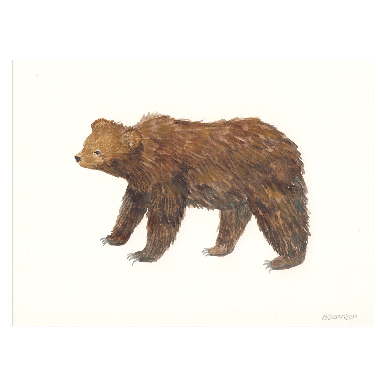Grizzly Bear Original Watercolor Painting