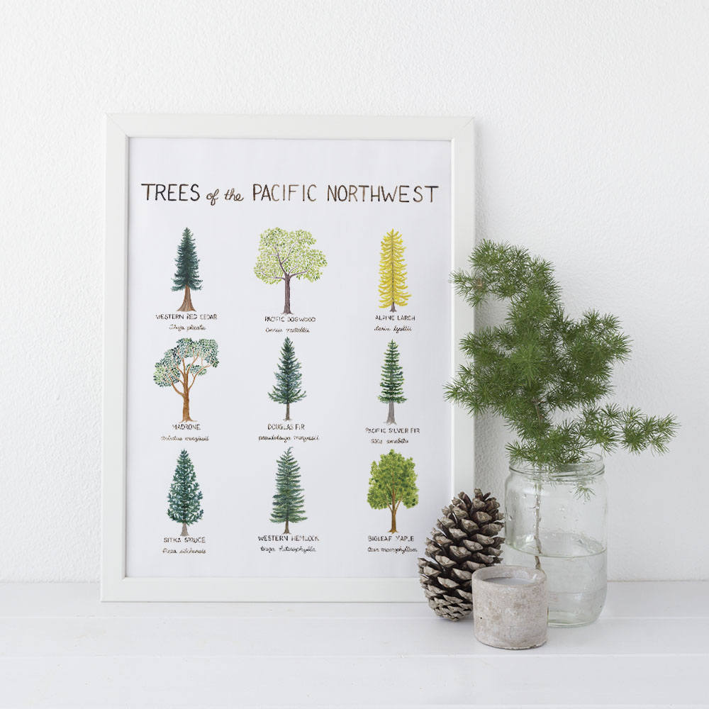 Pacific Northwest Trees Art Print, Watercolor Art Print