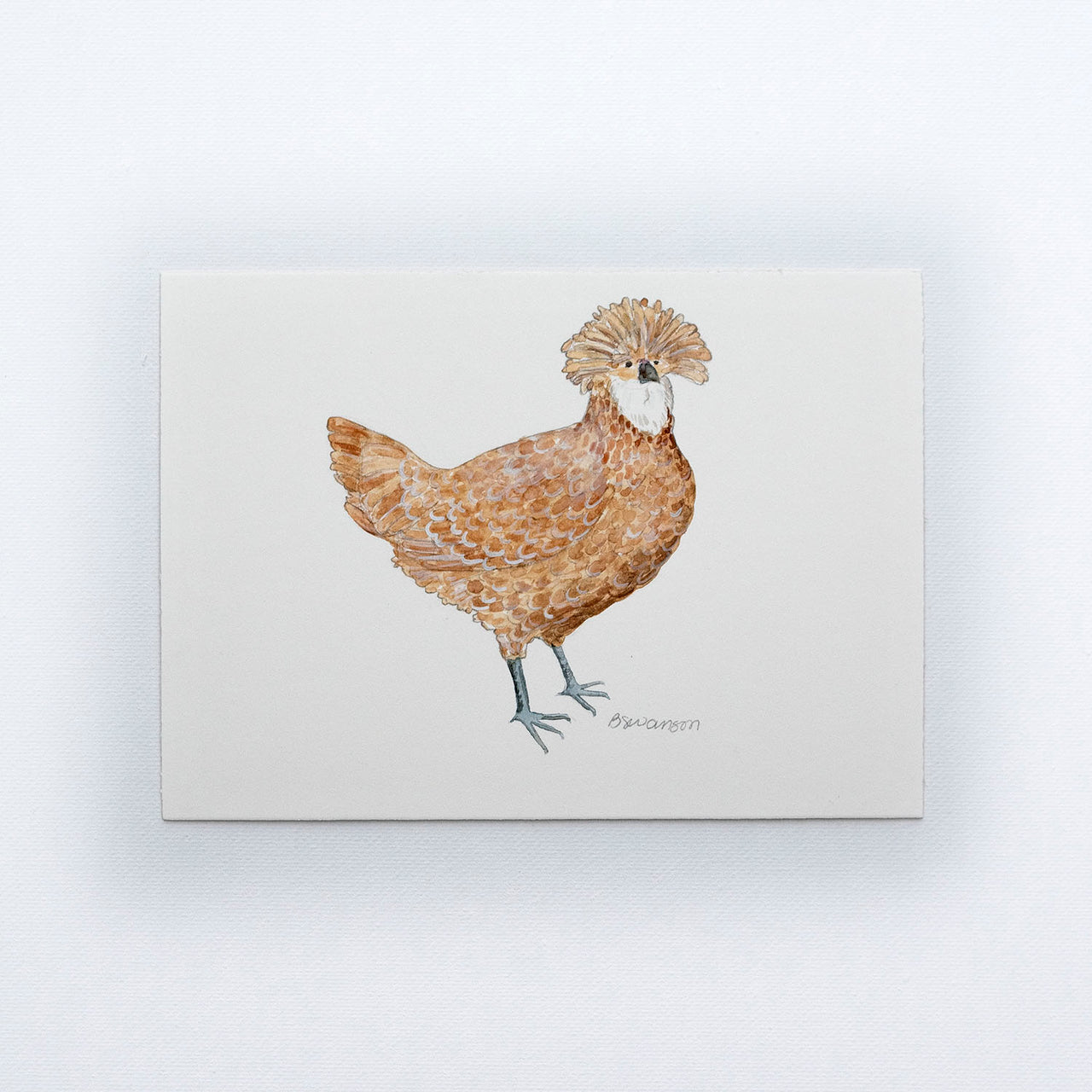 Polish Chicken Original Watercolor Painting